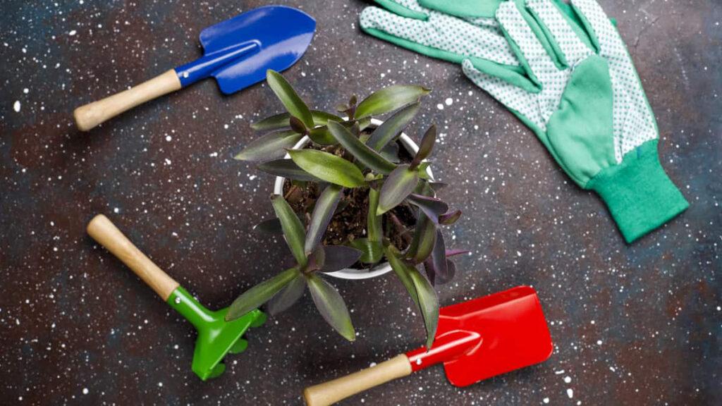 Material para Jardinagem