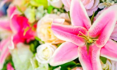 Plantas e flores artificiais