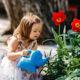 Como ensinar o amor pela natureza