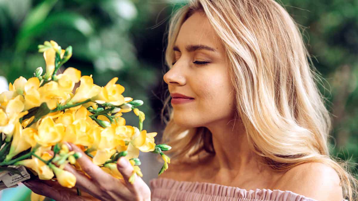 Flores que fazem bem a nossa saúde – Aromaterapia Natural