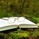 Provérbios e Citações Famosas sobre flores