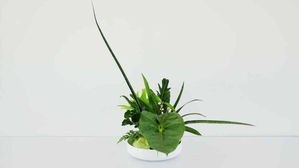 Ikebana Arte Oriental de Arranjos Florais