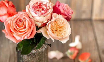 Você já ouviu falar de Flores de Simpatia?