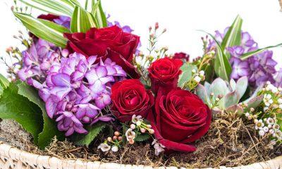 Cesta de flores Hortênsias de Santa Maria