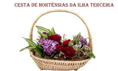 Lizgarden homenageia os Açores com lindas Hortênsias